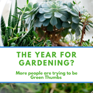 garden, gardening, stress